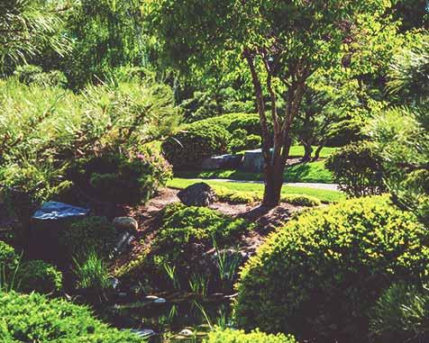 Startseite-Gartenanlage-bild-1