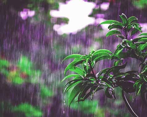 regenwasser-garten-gross